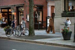 New Haven Chapel Street Sasquatch
