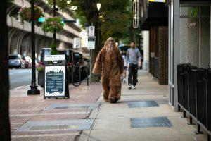 New Haven Apartments Bigfoot